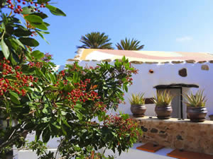 Organic Holidays - Desert Greenhouse Slow Holiday, Calle Tefia 8, 35611 Puerto del Rosario.
