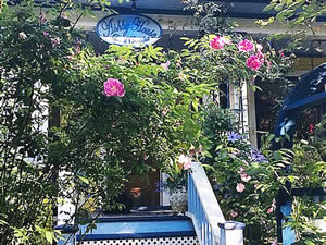 Organic Holidays - Ashby House Bed and Breakfast, 989 Bute Street, Vancouver [BC]. V6E 1Y7