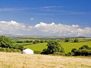 Organic Holidays - Devon Yurt Holidays, Borough Organic Farm, Kelly. PL16 0HJ