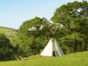 Organic Holidays - Eco Retreats Tipis, Dyfi Forest, Dyfi Valley. SY20 8PG
