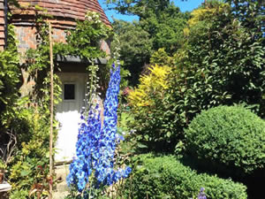 Organic Holidays - Experience Sussex Bed and Breakfast, Wimbles, Vines Cross. TN21 9HA