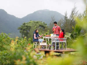 Organic Holidays - Harvest Fresh Farms, Cumbum Valley, Thekkady.