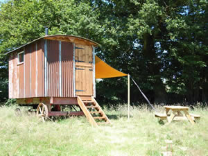 Organic Holidays - Hawthbush Shepherds Huts, Hawthbush Organic Farm, Gun Hill. TN21 0JY