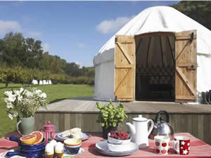 Organic Holidays - Hidden Spring Campsite, Vines Cross Road, Horam. TN21 0HG