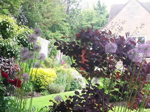 Organic Holidays - Homelands Bed and Breakfast, Butts Lane, Woodmancote. GL52 9QH