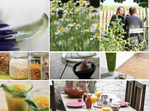 Organic Holidays - In Motion Eco Bed and Breakfast, Rue du Henrifontaine 17, 4280 Bertree Hannut.