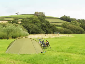 Organic Holidays - Lower Eastmoore Orchard Camping, East Moore, Totnes. TQ9 7PE