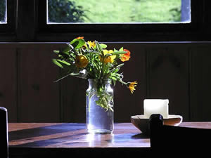 Organic Holidays - Mill Stream Cottage, Pen Pynfarch, Llandysul. SA44 4RU