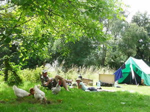 Organic Holidays - Monkton Wyld Court Camping, Charmouth, Bridport. DT6 6DQ