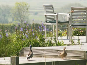 Organic Holidays - Moorhen Cottage, Court Lodge Organic Farm, Wartling. BN27 1RY