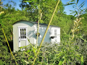 Organic Holidays - Rocombe Valley Retreat Shepherds Hut, Springfields Organic Farm, Lower Rocombe. TQ12 4QL