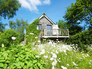 Organic Holidays - The Gorfanc Hideaway, Carno, Caersws. SY17 5JP