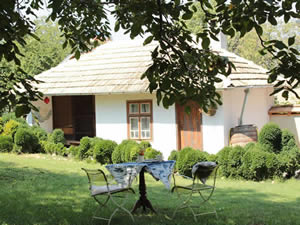 Organic Holidays - Wild Thyme Organic Farm and Eco Retreat, Klement Okridski 9, Palamartsa 7850.